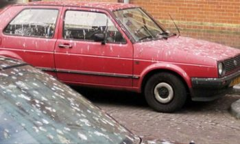 rode auto vogelpoep