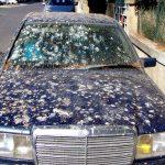 Vogelpoep op auto