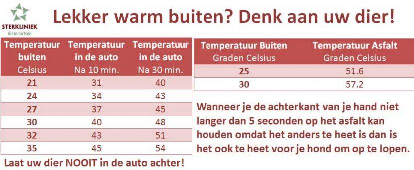 temperaturen auto en asfalt dieren